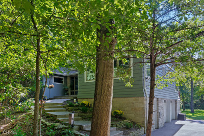 Downers Grove Single Family Home For Sale: 5230 Lee Avenue