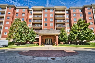 Morton Grove Condo/Townhouse For Sale: 8400 Callie Avenue #402