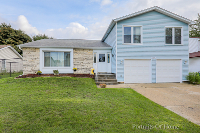 Glendale Heights Single Family Home For Sale: 157 Brookside Drive