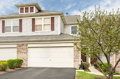 Glen Ellyn Condo/Townhouse For Sale: 110 Tanglewood Drive