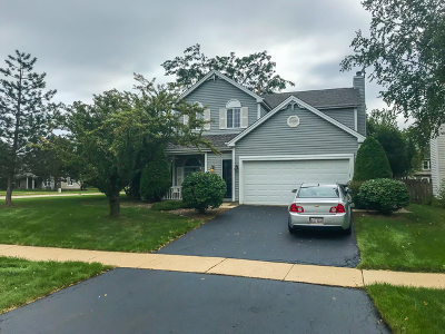 Carol Stream Single Family Home For Sale: 1197 Chalet Drive
