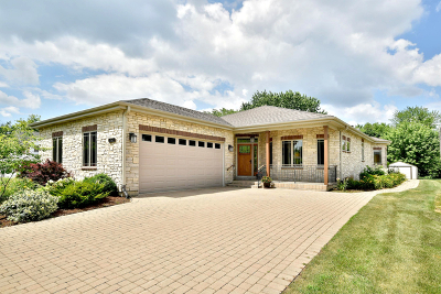 Downers Grove Single Family Home For Sale: 6156 Pershing Avenue