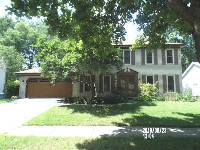 Naperville Single Family Home For Sale: 1209 Bainbridge Drive