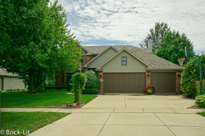 Mokena Single Family Home For Sale: 11403 Stratford Road