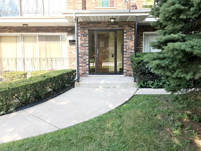 Hickory Hills Condo/Townhouse For Sale: 8739 South Roberts Road #3S
