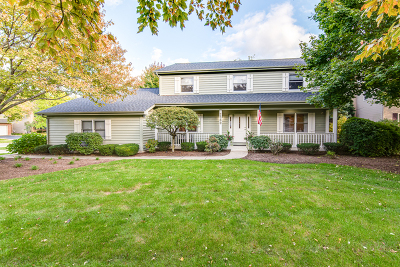 Naperville Single Family Home For Sale: 2360 Worthing Drive