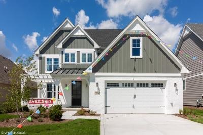 Burr Ridge Single Family Home For Sale: 7302 Lakeside (Lot 27) Circle