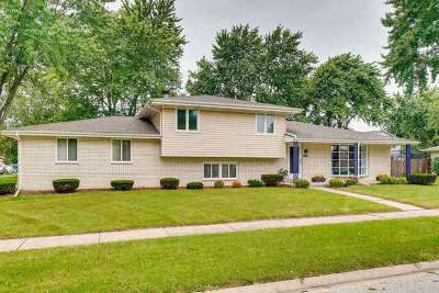 Minooka, Channahon Single Family Home New: 205 Indian Oaks Drive