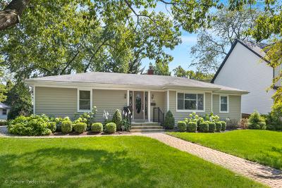 Naperville Single Family Home For Sale: 810 Douglas Avenue