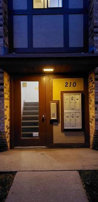 Carol Stream Condo/Townhouse For Sale: 210 Klein Creek Court #E
