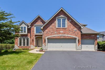 Aurora Single Family Home For Sale: 1248 Teasel Lane