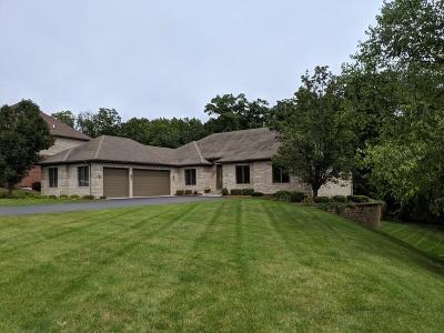 New Lenox Single Family Home For Sale: 1210 Hickory Creek Drive