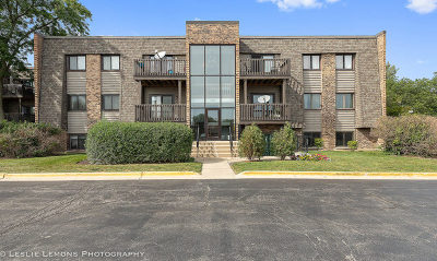 Wheaton Condo/Townhouse Price Change: 1486 Stonebridge Circle #A2