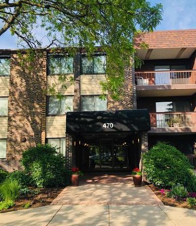 Glen Ellyn Condo/Townhouse For Sale: 470 Raintree Court #2N