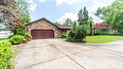 Des Plaines Single Family Home For Sale: 9723 Elm Terrace
