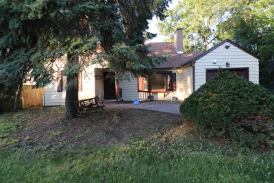 Des Plaines Single Family Home For Sale: 2105 Rand Road