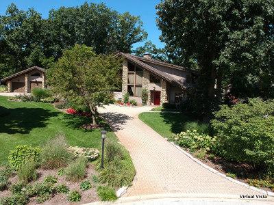 Burr Ridge Single Family Home For Sale: 172 Ashton Drive
