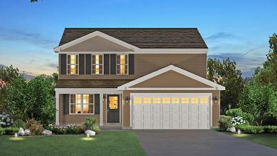 Romeoville Single Family Home For Sale: 459 Stonebrook Drive