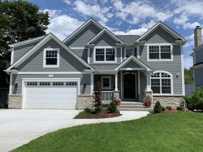 Glen Ellyn Single Family Home For Sale: 741 Euclid Avenue