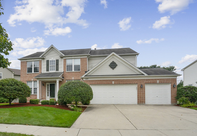 Streamwood Single Family Home New: 147 Rosewood Drive