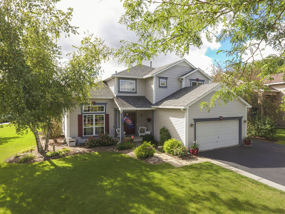 Lake In The Hills Single Family Home For Sale: 1148 Heavens Gate