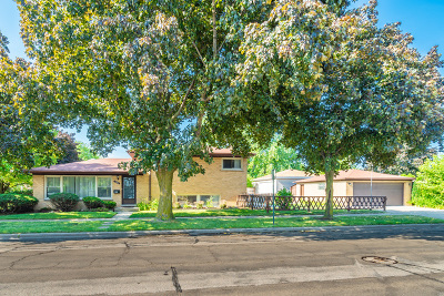 Morton Grove Single Family Home For Sale: 8101 Central Avenue