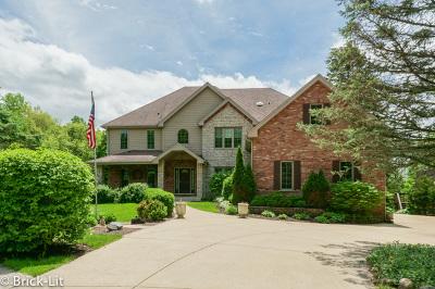 Mokena Single Family Home For Sale: 11151 203rd Street