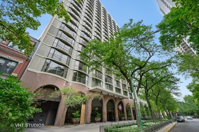 Condo/Townhouse For Sale: 1440 North State Parkway #9A