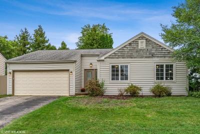 Aurora Single Family Home For Sale: 1070 Chelsea Lane