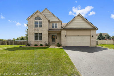 Romeoville Single Family Home For Sale: 291 Violet Drive