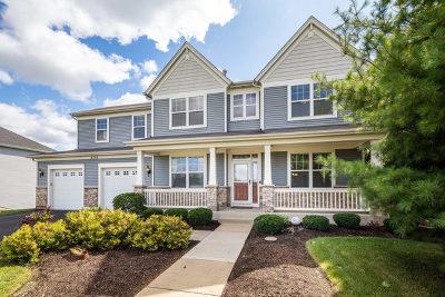 Oswego Single Family Home For Sale: 4702 Laughton Avenue