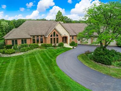 Burr Ridge Single Family Home For Sale: 15w140 83rd Street
