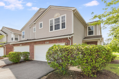 Crest Hill Condo/Townhouse Contingent: 21533 Eich Drive
