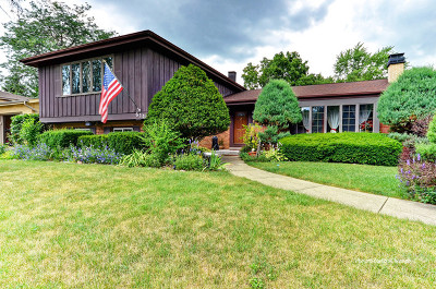Addison Single Family Home For Sale: 614 East Comstock Avenue