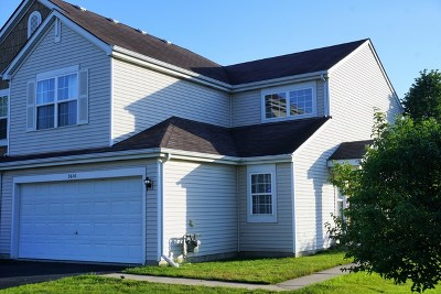 Joliet Condo/Townhouse For Sale: 3616 Forestview Drive #3616