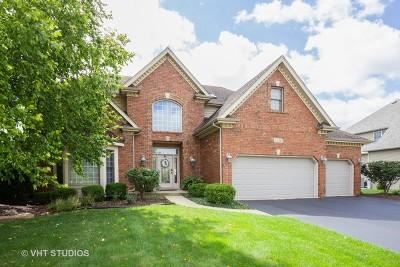 Naperville Single Family Home For Sale: 5536 Bergamot Lane
