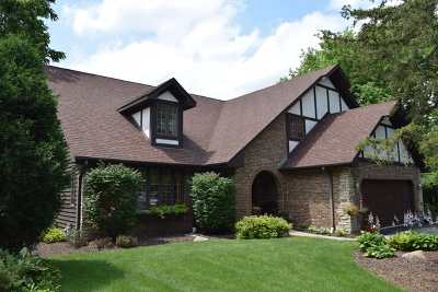 Bensenville Single Family Home For Sale: 856 South Church Road
