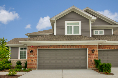 Downers Grove Condo/Townhouse For Sale: 1129 Crystal Avenue