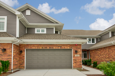 Downers Grove Condo/Townhouse For Sale: 1133 Crystal Avenue