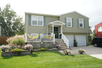 Frankfort Single Family Home For Sale: 20650 South Acorn Ridge Drive