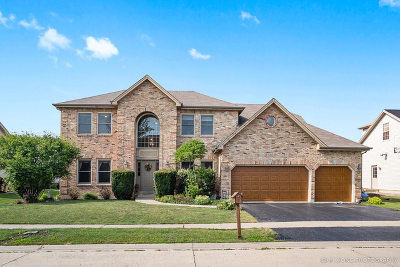 Oswego Single Family Home For Sale: 503 Crystal Court
