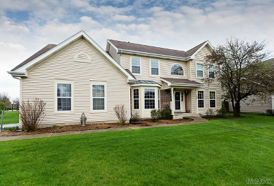 Aurora Single Family Home For Sale: 100 Stone Fence Court