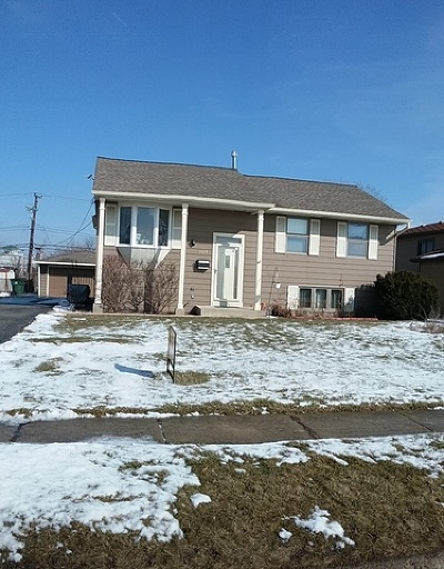 Woodridge Single Family Home For Sale: 7617 Larchwood Lane