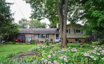 Lisle Single Family Home For Sale: 544 62nd Street