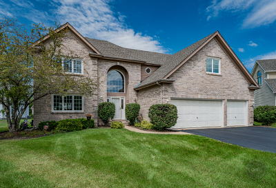 Naperville Single Family Home For Sale: 2907 Sibling Court