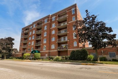 Condo/Townhouse New: 365 Graceland Avenue #604A