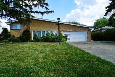 Des Plaines Single Family Home For Sale: 9339 Clancy Drive