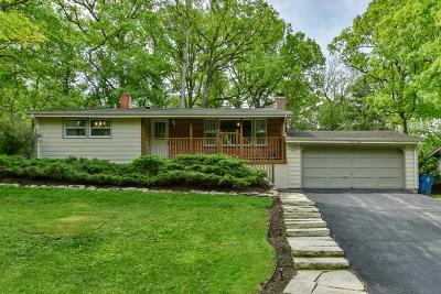 Carpentersville Single Family Home For Sale: 712 Elmwood Drive