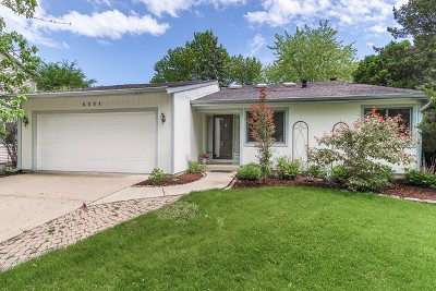 Lisle Single Family Home For Sale: 6581 Raintree Court
