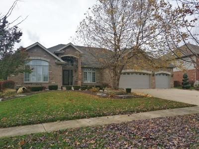 Mokena Single Family Home For Sale: 19910 Berkshire Drive